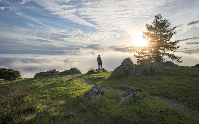 Planinarjenje