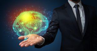 Človeški možgani
