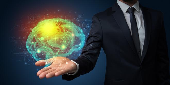 Kako delujejo človeški možgani?
